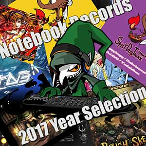 Notebook Records 2017 Year Selection